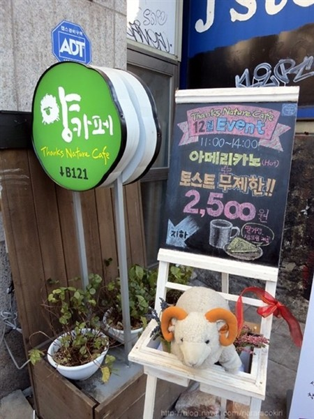 """Độc đáo quán cafe cừu đang """"sốt"""" dịp năm mới ở Hàn Quốc - anh 1"""