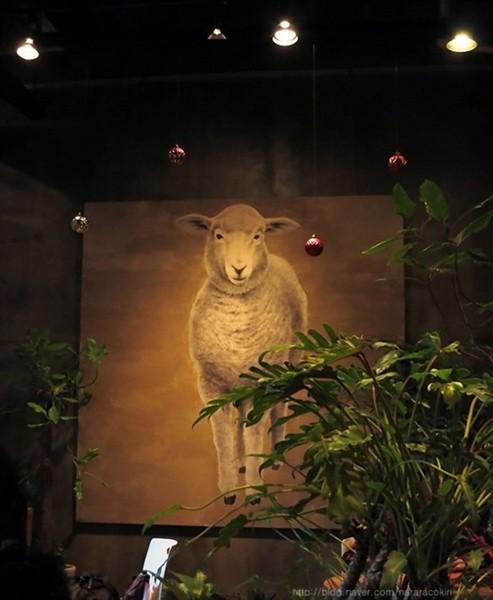 """Độc đáo quán cafe cừu đang """"sốt"""" dịp năm mới ở Hàn Quốc - anh 9"""