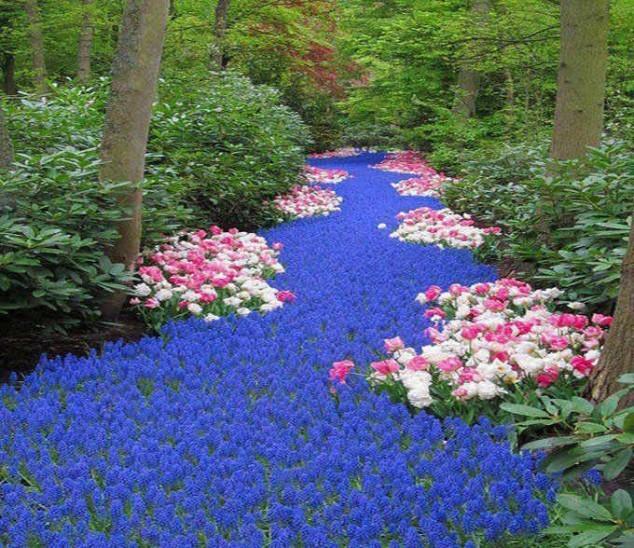 Chiêm ngưỡng cảnh sắc thần tiên của 10 khu vườn đẹp nhất thế giới - anh 4