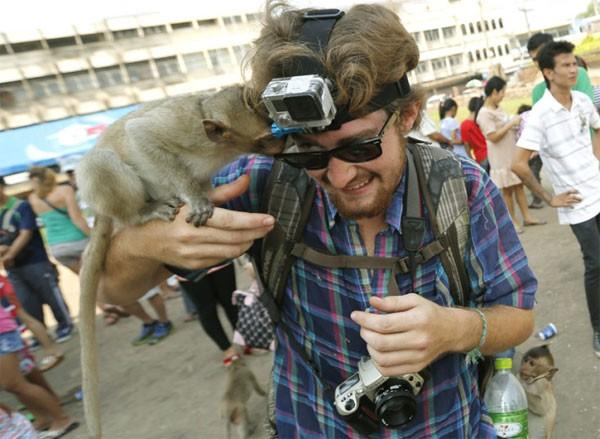 Độc đáo đại tiệc buffet cho khỉ ở Thái Lan - anh 4