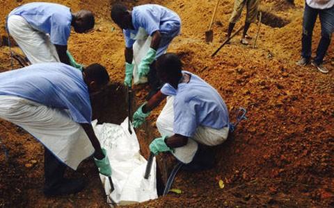 WHO: Dịch Ebola đang trở thành mối đe dọa toàn cầu - anh 1