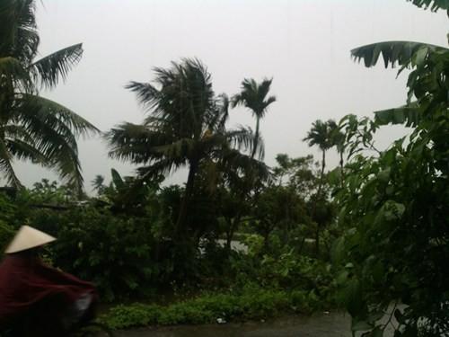 Tin bão: Các tỉnh ven biển hối hả chạy bão Kalmaegi - anh 1