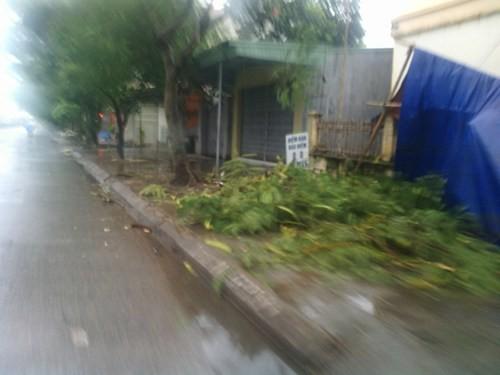 Tin bão: Các tỉnh ven biển hối hả chạy bão Kalmaegi - anh 4