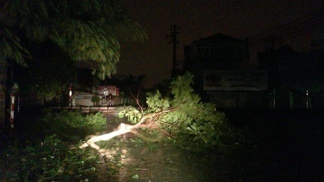 Tin bão sáng 17/9: Đường phố tan hoang sau bão số 3 - anh 14