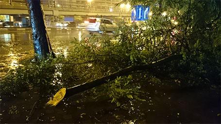 Tin bão sáng 17/9: Đường phố tan hoang sau bão số 3 - anh 19