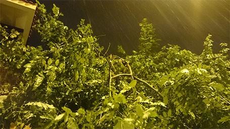 Tin bão sáng 17/9: Đường phố tan hoang sau bão số 3 - anh 18