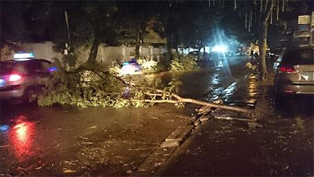Tin bão sáng 17/9: Đường phố tan hoang sau bão số 3 - anh 22