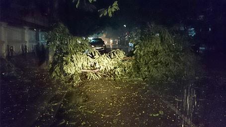 Tin bão sáng 17/9: Đường phố tan hoang sau bão số 3 - anh 23