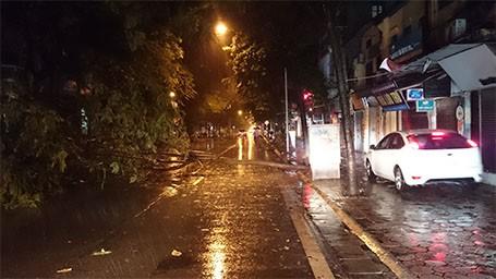 Tin bão sáng 17/9: Đường phố tan hoang sau bão số 3 - anh 24