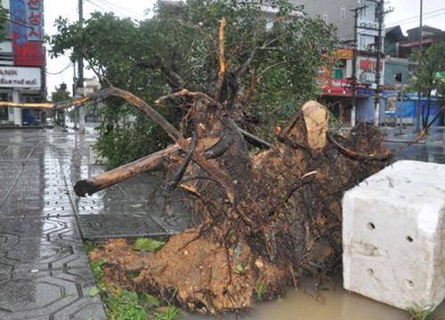 Tin bão sáng 17/9: Đường phố tan hoang sau bão số 3 - anh 7