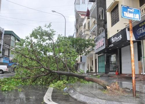 Tin bão sáng 17/9: Đường phố tan hoang sau bão số 3 - anh 8
