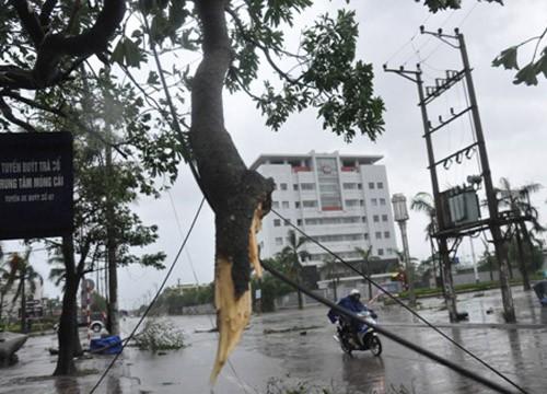 Tin bão sáng 17/9: Đường phố tan hoang sau bão số 3 - anh 9