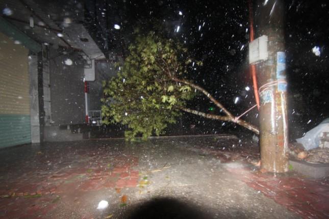 Tin bão sáng 17/9: Đường phố tan hoang sau bão số 3 - anh 5