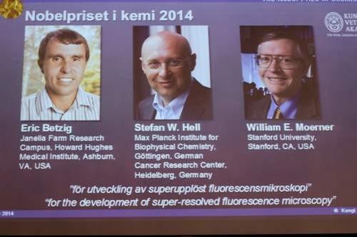 Nobel Hóa học 2014 về tay các nhà khoa học Mỹ, Đức - anh 1