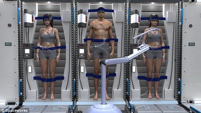 """Phi hành gia sẻ """"ngủ đông"""" trên đường đến sao Hỏa - anh 1"""