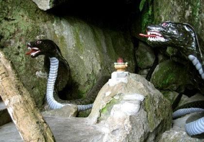 Rùng mình chuyện rắn thần báo oán ở Thái Nguyên - anh 1