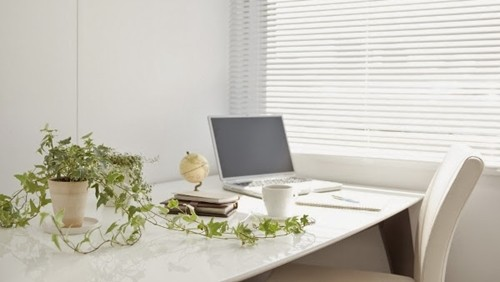 Những lưu ý khi bố trí cây cảnh trên bàn làm việc - anh 1