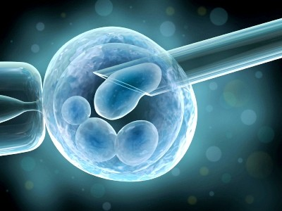 Nuôi cấy trứng và tinh trùng từ tế bào da: Cuộc cách mạng trong điều trị vô sinh - anh 1
