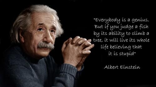 20 câu nói kinh điển của thiên tài Albert Einstein - anh 3