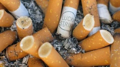 Tạo ra điện từ những đầu lọc thuốc lá đã qua sử dụng - anh 2