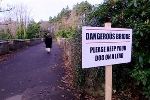 """Bí ẩn cây cầu cổ khiến người và chó đi ngang muốn """"tự tử"""" - anh 3"""