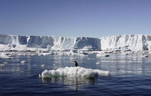 Cảnh báo: Nước biển có thể dâng lên ít nhất 6m trong tương lai - anh 1