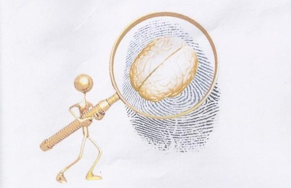 Xác định độ thông minh và tính cách thông qua dấu vân tay - anh 3