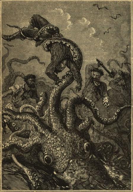 Thủy quái Kraken thật sự tồn tại? - anh 1