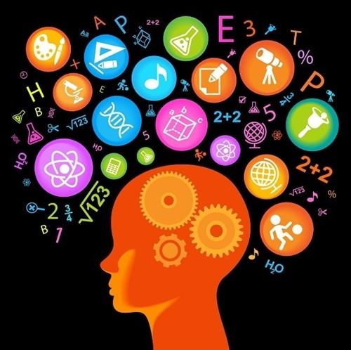 10 điều thú vị về bộ não con người có thể bạn chưa biết - anh 2