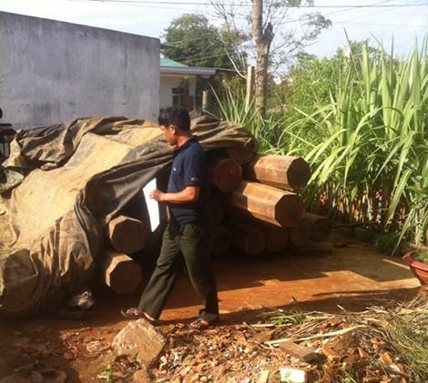 Đắk Lắk: Phát hiện 5,5m3 gỗ lậu quý hiếm trong nhà nguyên bí thư huyện - anh 1