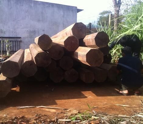 Đắk Lắk: Phát hiện 5,5m3 gỗ lậu quý hiếm trong nhà nguyên bí thư huyện - anh 2