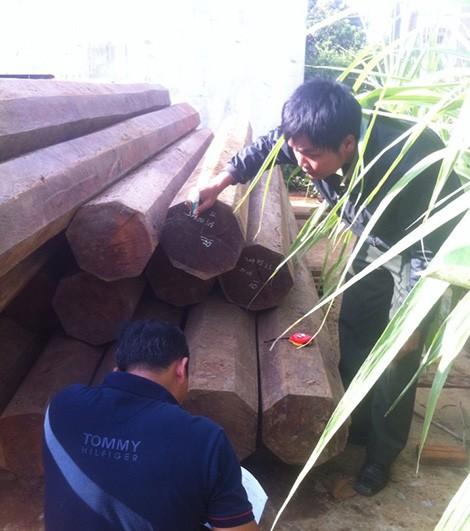 Đắk Lắk: Phát hiện 5,5m3 gỗ lậu quý hiếm trong nhà nguyên bí thư huyện - anh 3