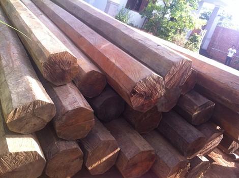 Đắk Lắk: Phát hiện 5,5m3 gỗ lậu quý hiếm trong nhà nguyên bí thư huyện - anh 4