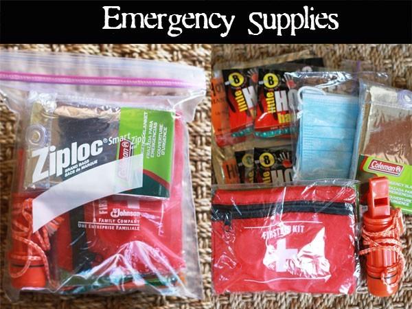 """Học lỏm mẹ Tây cách chuẩn bị """"túi sinh tồn"""" cho con trong trường hợp khẩn cấp - anh 4"""
