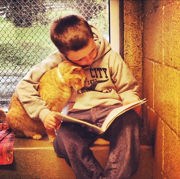 """""""Đọc vị"""" người khác dựa vào sở thích nuôi thú cưng - anh 3"""