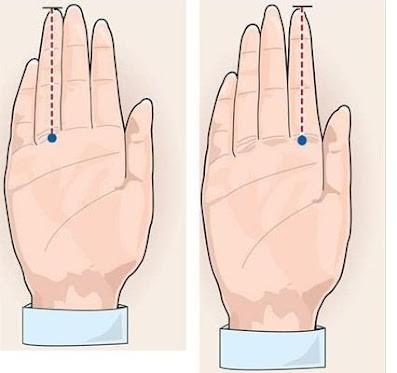 Những sự thật thú vị về ngón tay áp út của đàn ông - anh 1