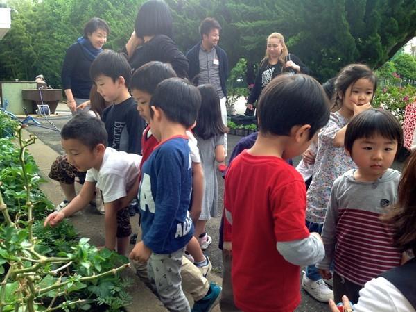 Cận cảnh một giờ học về thiên nhiên của trẻ mẫu giáo Nhật - anh 10
