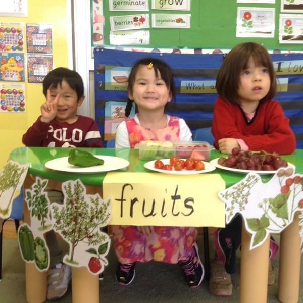 Cận cảnh một giờ học về thiên nhiên của trẻ mẫu giáo Nhật - anh 12