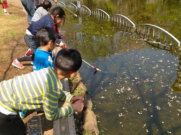 Cận cảnh một giờ học về thiên nhiên của trẻ mẫu giáo Nhật - anh 14