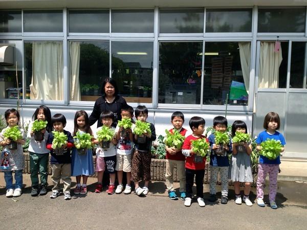 Cận cảnh một giờ học về thiên nhiên của trẻ mẫu giáo Nhật - anh 3