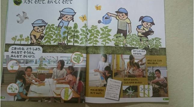 Những điều thú vị trong Sách giáo khoa môn Đời sống lớp 1 ở Nhật - anh 4