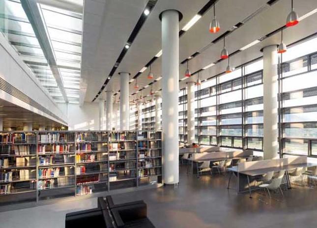 Điều gì khiến Đại học Thâm Quyến là điểm đến du học lý tưởng nhất Trung Quốc? - anh 2