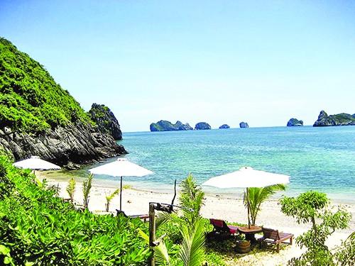 Nét xuân trên Đảo Phú Quốc - anh 1