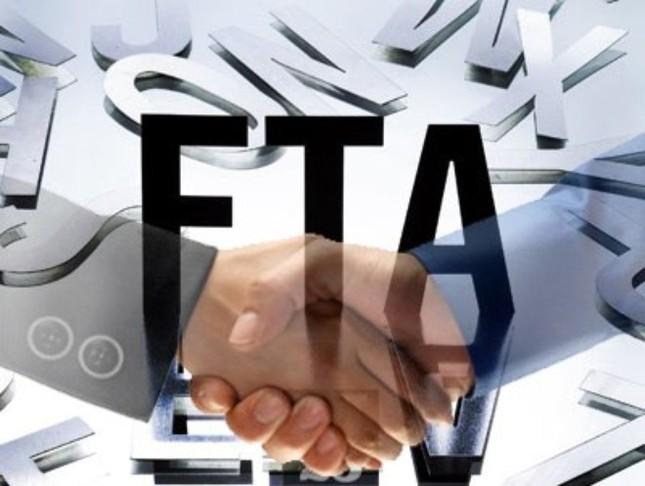 Việt Nam nỗ lực tham gia FTA: Cơ hội cho thị trường xuất khẩu Việt - anh 1