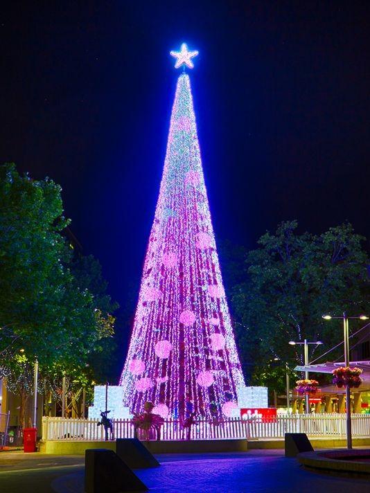 Cây thông Noel lập kỷ lục thế giới với hơn nửa triệu ngọn đèn - anh 1