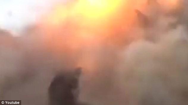 Syria: Khủng bố trúng đạn pháo khi đang ăn mừng chiến thắng - anh 2