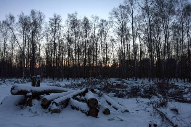 Quân nhân Nga đào ngũ, lẩn trốn trong rừng suốt hơn một thập kỷ - anh 1
