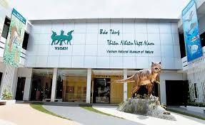 Thủ tướng đồng ý xây dựng bảo tàng Thiên nhiên Việt Nam - anh 1