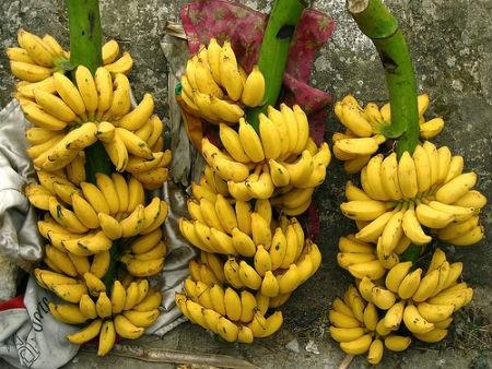 Ăn những trái cây nào có thể chống ung thư? - anh 8