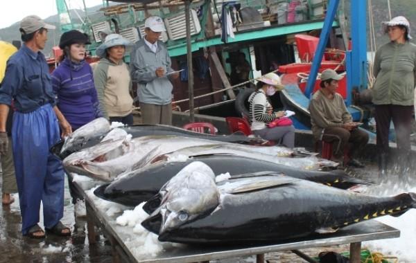 5 loại hải sản được ưa thích nhưng vô cùng độc hại - anh 2